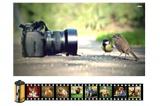 Fotografie z filmů