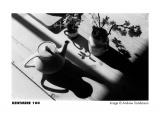 KENTMERE 100 135/36, černobílý film